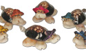 Cowrie shell turtles