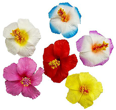 Hibiscus Flower Hair clip, color edged white
