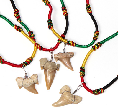 Rasta braided rayon necklace with real fossilized otodus sharks tooth pendant by Tropical Rose