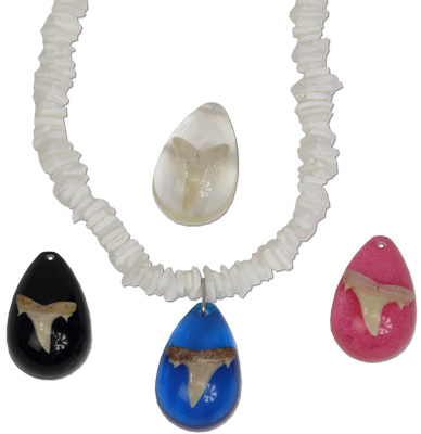 White rose square chip puka shell necklace with real fossilized otodus sharks tooth